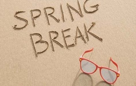 Where are You Going for Spring Break?